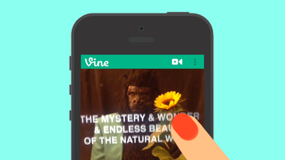 The 9 Best Vines of the Week: A Jab at Instagram & A Priceless SCOTUS Moment
