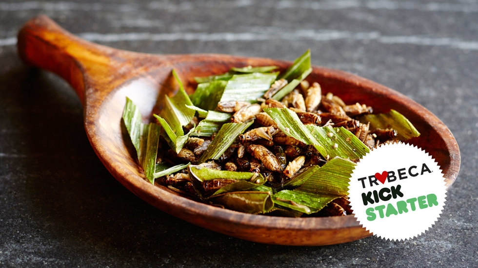 Bugging Out: This Kickstarter Doc Explains Why Crickets Should Be Your New Favorite Snack