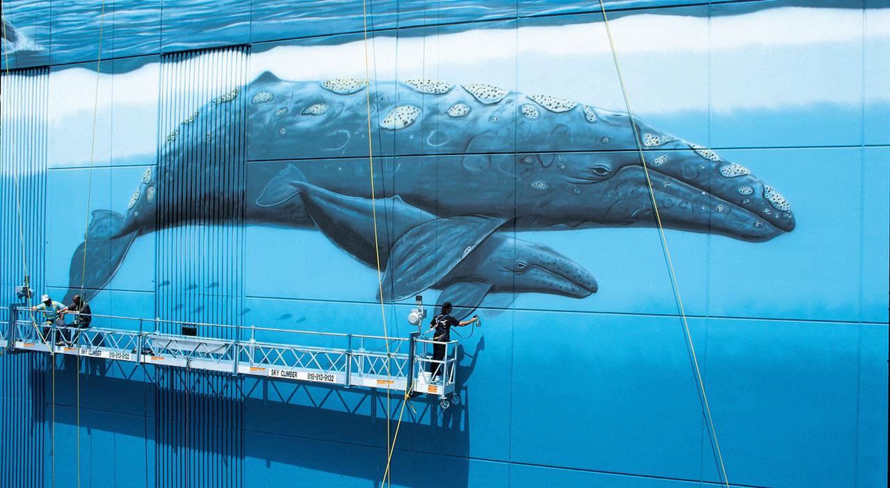 Ocean Stories: Wyland