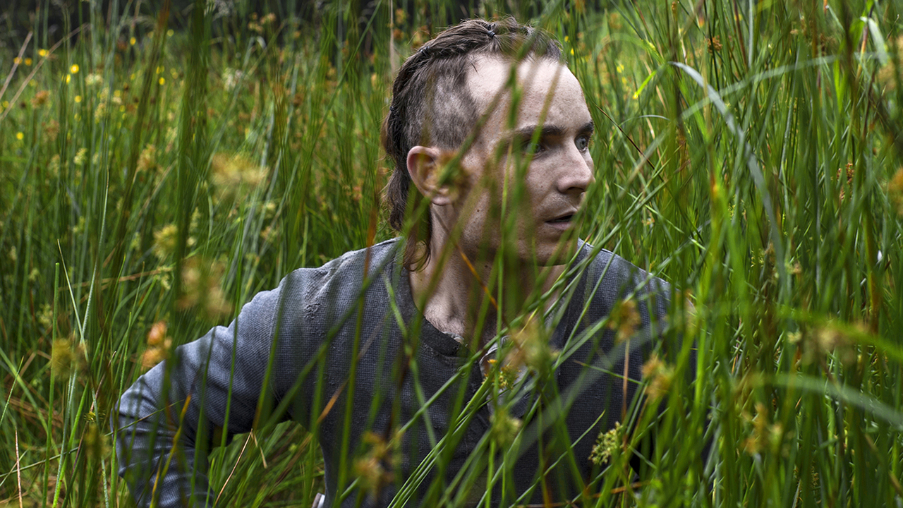 Best New Narrative Director, Special Jury Mention  - Stephen Fingleton for The Survivalist